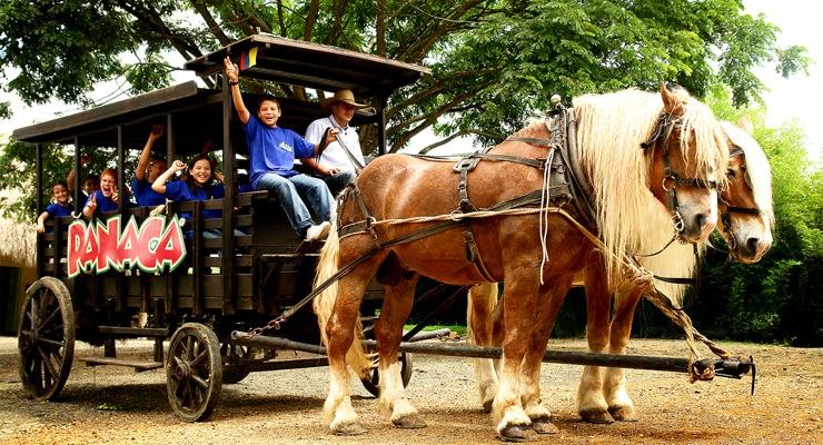 parque panaca quimbaya