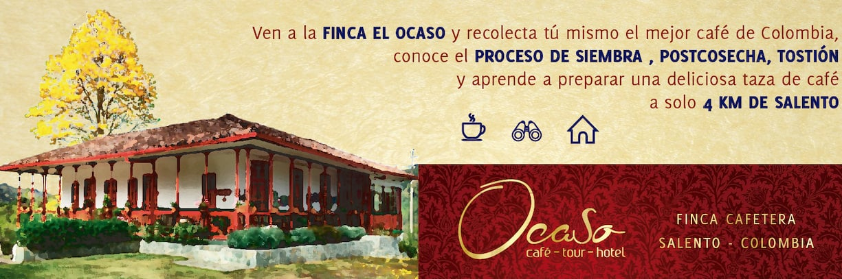 coffee tour finca el ocaso salento