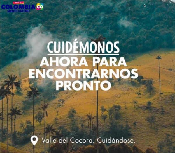 Valle de Cocora Turismo Quindio