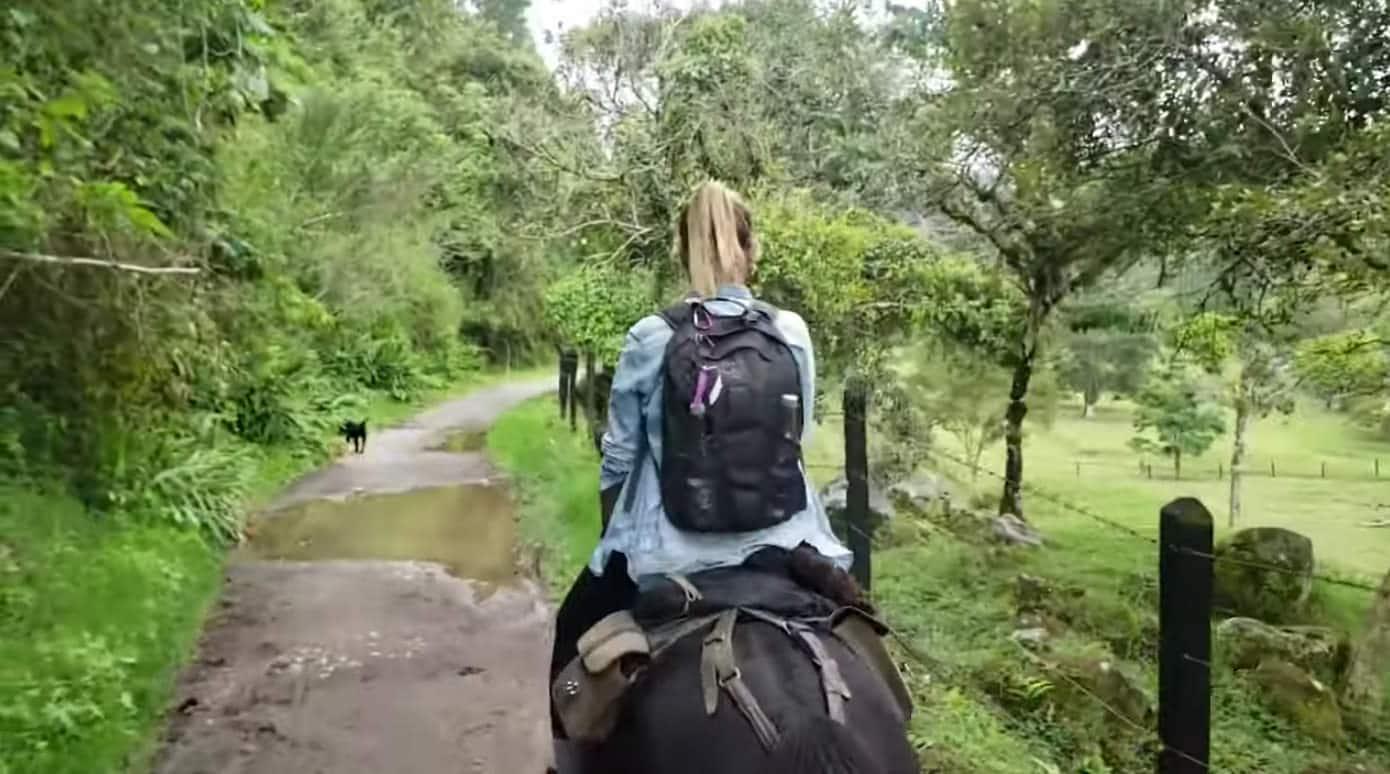 Cabalgatas Valle del Cocora