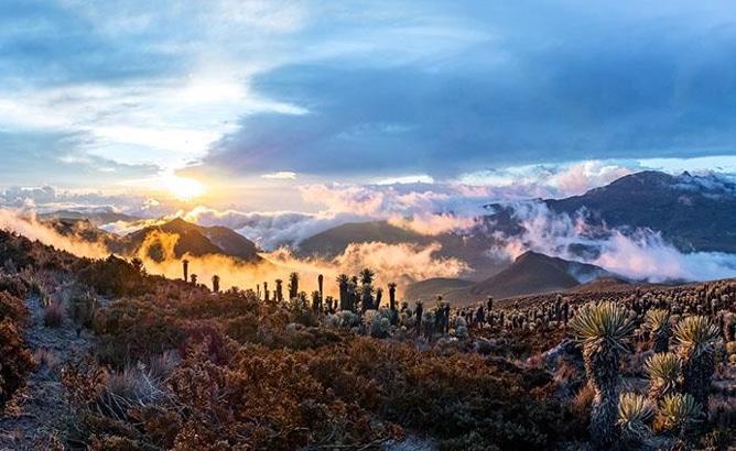 Imagen captada del parque nacional Los Nevados